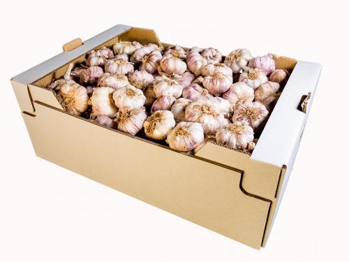 20 kg box