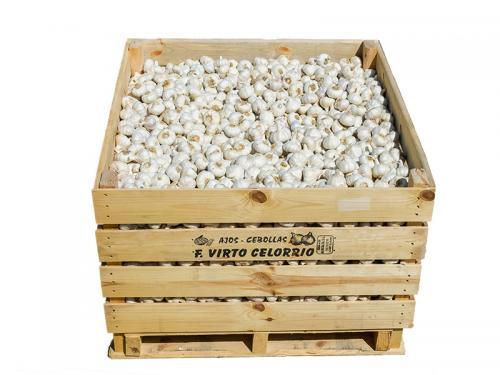 Garlic in large crates